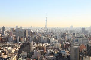 東京都市風景 東京スカイツリーの写真素材 [FYI01749519]