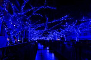 中目黒イルミネーション 青の洞窟の写真素材 [FYI01749574]
