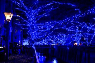 中目黒イルミネーション 青の洞窟の写真素材 [FYI01749609]