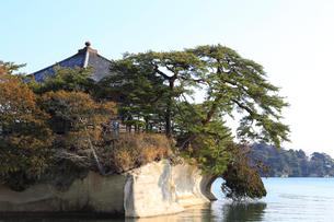 松島の五大堂の写真素材 [FYI01749647]