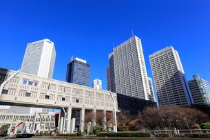 新宿副都心の高層ビル群の写真素材 [FYI01749888]