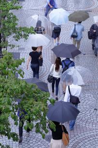 雨の日の都会の写真素材 [FYI01750200]