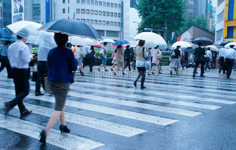 雨の日の都会風景の写真素材 [FYI01750455]