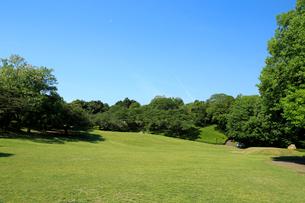 岩本山公園の写真素材 [FYI01750478]