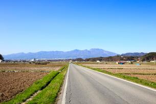 畑を貫く一本道の写真素材 [FYI01750627]