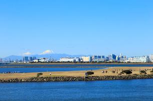 葛西海浜公園 西なぎさと富士山の写真素材 [FYI01750653]