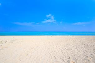 南の島の白いビーチの写真素材 [FYI01750719]