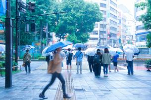雨の日,信号待ちする人々の写真素材 [FYI01750762]