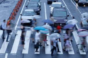 雨の日,横断歩道を渡る人々の写真素材 [FYI01750764]