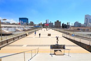 上野 パンダ橋の写真素材 [FYI01750773]