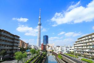 北十間川と東京スカイツリーの写真素材 [FYI01750774]
