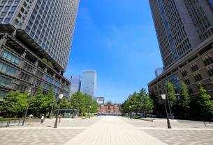 東京駅と行幸通りの写真素材 [FYI01750779]