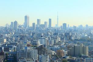 東京スカイツリーと都市風景の写真素材 [FYI01750796]