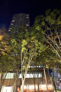 豊島区役所の夜景の写真素材 [FYI01750838]