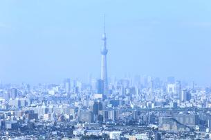 朝霧に霞む東京スカイツリーの写真素材 [FYI01751159]