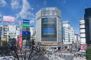 渋谷 スクランブル交差点の写真素材 [FYI01751200]