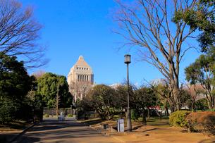 国会前庭和式庭園と国会議事堂の写真素材 [FYI01751221]