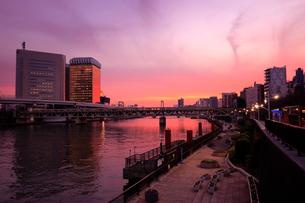 隅田川の夕景の写真素材 [FYI01751338]