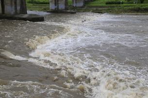 自然災害イメージ 台風で増水した河川の写真素材 [FYI01751426]