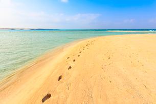 南の島のビーチと足跡の写真素材 [FYI01751532]
