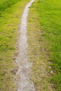 野原に伸びる一本道の写真素材 [FYI01752099]
