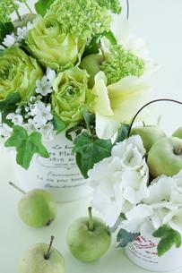 青リンゴとバラの写真素材 [FYI01752318]