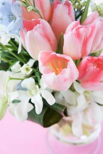 チューリップの花束の写真素材 [FYI01752379]