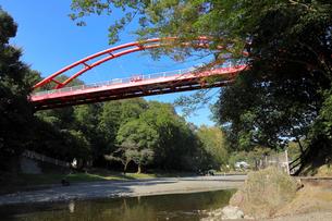 飯能河原 割岩橋の写真素材 [FYI01752415]