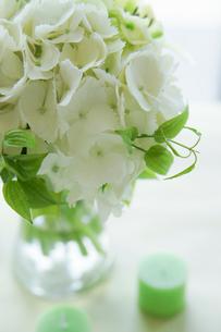 白いアジサイとグリーンのキャンドルの写真素材 [FYI01752481]