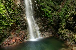 滝壺へ流れ落ちる滝の写真素材 [FYI01752489]
