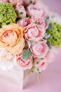 バラとラナンキュラスの春のアレンジの写真素材 [FYI01752875]