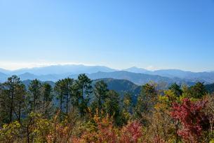 高尾山の紅葉と富士山の写真素材 [FYI01753215]