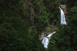 不動七重滝の写真素材 [FYI01753237]