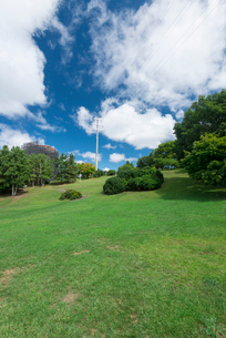 青空が美しい平岸高台公園の写真素材 [FYI01753354]