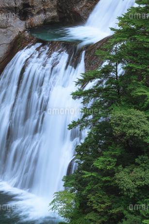 不動七重滝の写真素材 [FYI01753400]