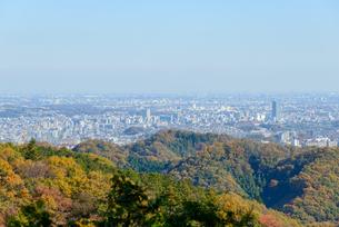 高尾山の紅葉と東京都心遠景の写真素材 [FYI01753442]