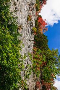 笙の窟の紅葉の写真素材 [FYI01753445]