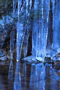 氷柱の写真素材 [FYI01753529]