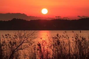 夕日の写真素材 [FYI01753694]