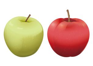 果物 リンゴ 青リンゴのイラスト素材 [FYI01753761]