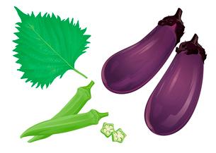 野菜 茄子 オクラ 大葉のイラスト素材 [FYI01753770]