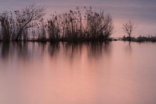 残照の湖面の写真素材 [FYI01753791]