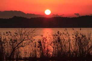 夕日の写真素材 [FYI01753959]
