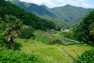 広島県北の農村の写真素材 [FYI01754380]