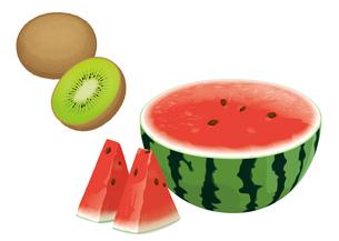 果物 スイカ キウイのイラスト素材 [FYI01754755]