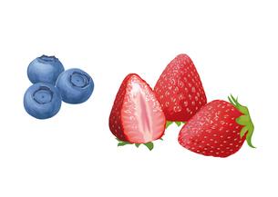 果物 イチゴ ブルーベリーのイラスト素材 [FYI01754769]
