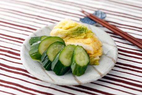 きゅうりと白菜の漬物の写真素材 [FYI01755261]