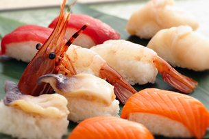 北海道の寿司の写真素材 [FYI01755528]