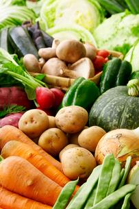北海道道産野菜イメージの写真素材 [FYI01755560]