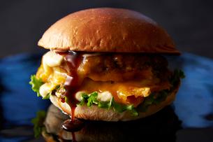 チーズハンバーガーの写真素材 [FYI01755728]